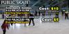 Regular Public Skating Sessions