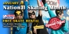 January is National Skating Month!